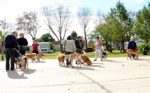 Campaña de tenencia responsable de mascotas en Pueblo Belgrano