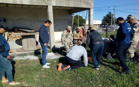 Rescataron una aguará guazú que había sido visto en el casco urbano de Paraná