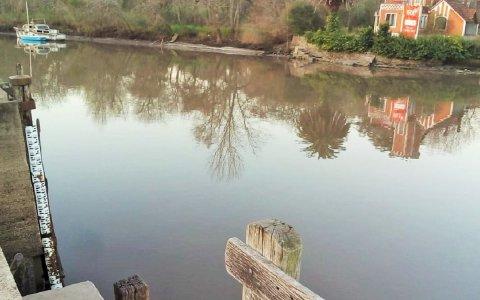 Encontraron el cuerpo de un hombre ahogado en el río Gualeguaychú