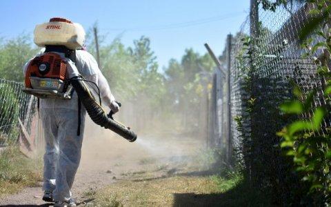 Paraná: activan protocolo tras confirmarse el primer caso dengue autóctono