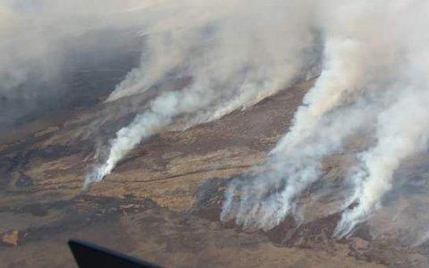 Bomberos de Gualeguaychú integran la brigada que combate los incendios en las islas del río Paraná